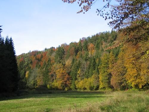 Aufsesstal im Herbst